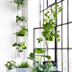 Die Vertical Flowerpots von Trimm Copenhagen sind eine praktische und dekorative Alternative zum klassischen Blumentopf.