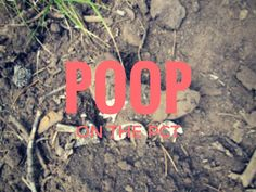 Everybody poops: straight poop from Ranger John about number two on the PCT - Pacific Crest Trail Association