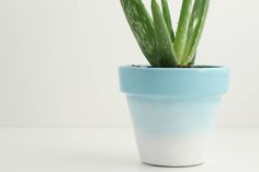 Gradient pastel blue and white hand painted plant pot, 11cm x 9.5cm, indoor or outdoor use