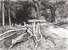 david hockney lanscape charcoal drawing - inspiration for EXPLORATION project