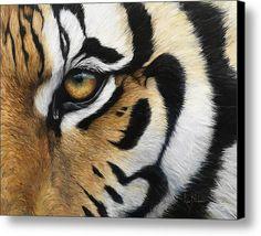 Tiger Eye Canvas Print / Canvas Art By Lucie Bilodeau