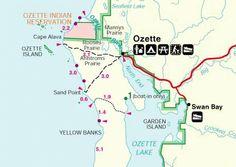 Ozette - Google'da Ara