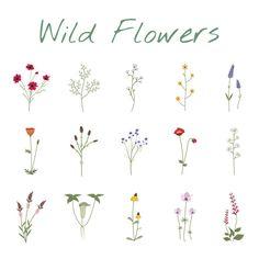 Drawing Flowers & Mandala in Ink - Flower tattoos - Tatuagens Ideias Small Flower Tattoos, Flower Tattoo Designs, Small Tattoos, Tattoo Flowers, Small Flower Drawings, Art Floral, Flower Mandala, Flower Art, Lotus Flower