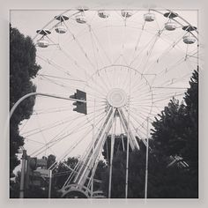 Marina Fiorletta  @marinafior Fair Grounds, Instagram Posts, Travel, Viajes, Trips, Traveling, Tourism, Vacations