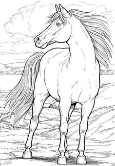 Cool Collection of Horse Coloring Pages. Please welcome, there is a collection of horse coloring pictures on this page. You can print and the color as you like. Dover Coloring Pages, Horse Coloring Pages, Coloring Pages To Print, Printable Coloring Pages, Adult Coloring Pages, Coloring Pages For Kids, Coloring Books, Free Coloring, Coloring Sheets
