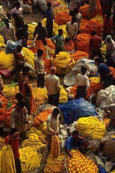 Blumenmarkt Kalkutta wurde in Indien, Kalkutta aufgenommen (flower market in Calcutta). Marigolds are important in Indian ceremonies.