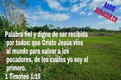 17 de mayo de 2015  Versículo del Día  Palabra fiel y digna de ser recibida por todos: que Cristo Jesús vino al mundo para salvar a los pecadores, de los cuales yo soy el primero.1 Timoteo1:15RVR1960
