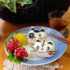 Cat onigiri