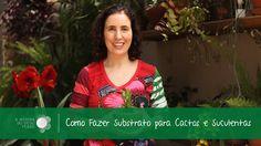 Nô Figueiredo Ensina Como Fazer Substrato para Cactos e Suculentas