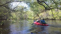 Canoeing on the Lumber River.