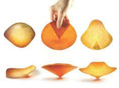 """Résultat de recherche d'images pour """"diane leclair bisson edible project"""""""