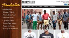 Trendseller Responsive Ecommerce WordPress Theme