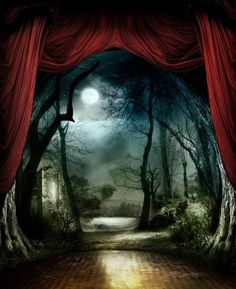stage design - moody and mysterious. Even though this is a stage set I would SO love to figure out a way to use it residentially. Fantasy World, Fantasy Art, Dark Fantasy, Arte Punch, Night Circus, Scenic Design, Stage Design, Theatre Design, Set Theatre