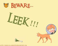 Kyo's second greatest enemy... leeks ha ha I wonder what he'd do if he found a farfetched I beat he'd have fit