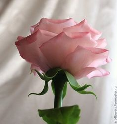Цветы ручной работы. Ярмарка Мастеров - ручная работа Розовая роза (холодный фарфор). Handmade.