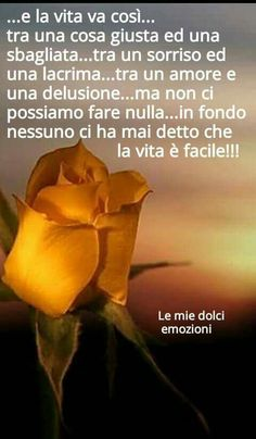 Italian Life, Beautiful Words, To Tell, Encouragement, Life Quotes, Scene, Thoughts, Sayings, Italian Quotes