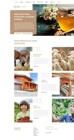 Agriculture Responsive Website Template #58210 http://www.templatemonster.com/website-templates/agriculture-responsive-website-template-58210.html