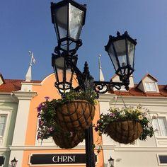 "Páči sa mi to: 7, komentáre: 1 – Martin Bugár (@martin_bugarr) na Instagrame: ""Took this photo in Parndorf 📷 #2017 #flowers #sopretty #basket"""