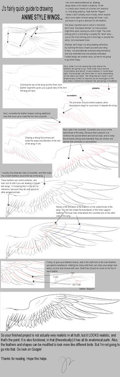 guide_wings.png (512×1600)