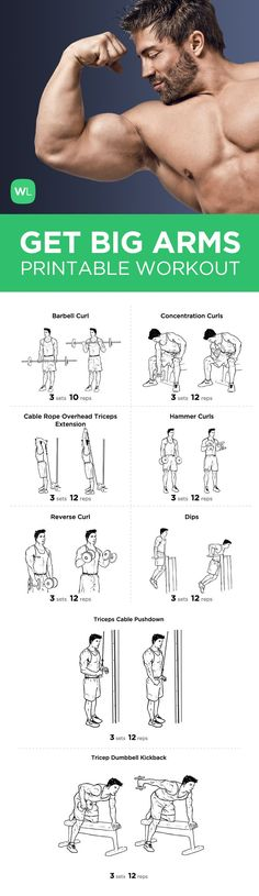 BIG ARM Bicep and Tricep Workout Routine This routine is to be perform twice a week with two days of resting between each workout session to allow muscle Pound Of Fat, Tricep Workout Routine, Big Arm Workout, Chest And Arm Workout, Bicep And Tricep Workout, Chest Workouts, Get Bigger Arms, How To Get Bigger, Pnf Stretching