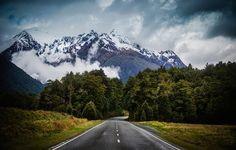 <h2>A Fun Weekend on the South Island</h2> <br/>I jumped in the car with the family to take a little road trip down to Milford Sound. I took a bunch of photos, but wanted to go ahead and share three of them here with you. I know I usually just share one a day, but this is a little bonus I guess!<br/><br/>The road from Te Anau to Milford Sound is insanely beautiful. After a long drive through a meadow, you come to this small forest that leads deeper into the mountains.<br/><br/>- Trey ...