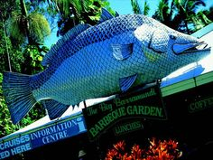 The Big Barramundi in QLD is a testimonial to the most desired fish in the State. The Big Barramundi resides above the entrance to the Big Barramundi Barbeque Gardens in Daintree. Roadside Attractions, Unusual Things, Walkabout, Where To Go, The Past, Weird, Places To Visit, Around The Worlds, Big Thing