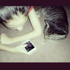 WithMeong