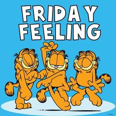 images of garfield Friday Good Morning Friday, Feel Good Friday, Good Morning Funny, Friday Weekend, Friday Feeling, Morning Humor, Good Morning Quotes, Happy Weekend, Garfield Pictures
