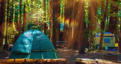 Check out these brilliant camping ideas you can't help but love.