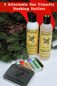 5 Affordable Eco Friendly Stocking Stuffers http://makobiscribe.com/stocking-stuffer-gifts-under-10/