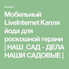 Мобильный LiveInternet Капля йода для роскошной герани | НАШ_САД - ДЕЛА НАШИ САДОВЫЕ |
