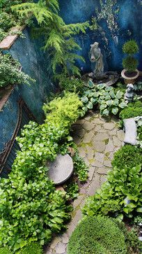 Lawn And Blue Stone Patio Surrounded By Korean Boxwood Hedges And White Perennial Gardens A