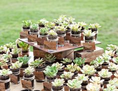An eco-friendly idea for escort cards. Succulents escort cards/favors-- that you guests can plant when they get home. Wedding Favor Table, Succulent Wedding Favors, Creative Wedding Favors, Unique Wedding Favors, Wedding Party Favors, Wedding Ideas, Terrarium Wedding, Wedding Thank You Gifts, Wedding Tables