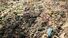 Pavilhão Zero da ExpoMilão quer conscientizar sobre o desperdício de alimentos no mundo. Atualmente, um terço da produção mundial, o equivalente a 1,3 bilhão de toneladas, vai para o lixo, enquanto poderia alimentar aproximadamente 800 milhões de pessoas. (Foto: Bruno Blecher/Ed. Globo)