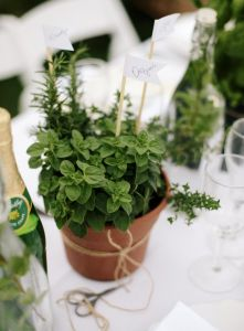 From bouquets to centerpieces, people are translating their love for gardening into inspirations for their big day! Wether you're set on a vegetable theme, looking to save a couple bucks in the process, or just looking for rustic inspiration; a veggie themed wedding might be perfect for you!...(click to read more)