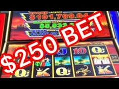 Nuncha Jean has a massive big pokie win on lightning link at $250 Bet! Lightning Link, Local Pubs, Website Link, You Youtube, Big