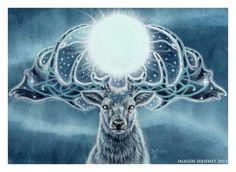 #full moon #buck #starry night