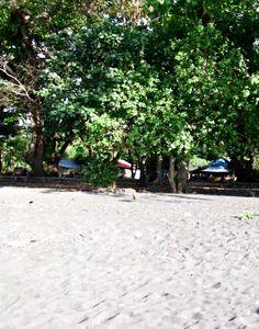 Viaggi in Indonesia: Amurang spiaggia, oceano