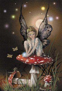 Fairy Toadstool ...