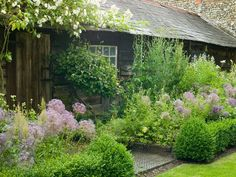 box hedges, herbs and aliums. A little gardening inspiration