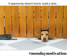 #Mondaymotivation here's hoping great opportunities come your way today