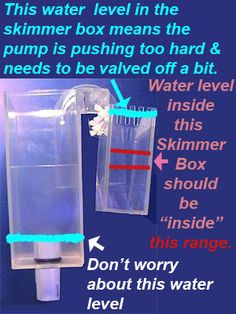 """diagram of proper water levels in overflow box plus """"How To Setup a Saltwater Reef Aquarium - Step By Step by Aquacorals"""""""