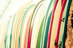 love this photo.  want this quiver
