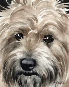 Choose your favorite cairn terrier paintings from millions of available designs. All cairn terrier paintings ship within 48 hours and include a money-back guarantee. Cairn Terriers, Terrier Dogs, Watercolor Animals, Watercolor Paintings, Watercolors, Watercolor Paper, Australian Terrier, West Highland Terrier, Dog Portraits
