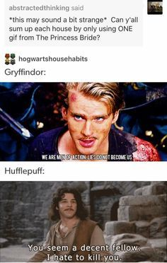 Best crossover EVER! Harry Potter Houses and the Princess Bride. Harry Potter Fandom, Harry Potter Memes, Harry Potter Characters, The Princess Bride, Princess Bride Quotes, Fandoms, Hogwarts Houses, Por Tv, Mischief Managed