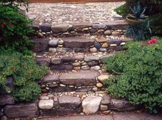 pebble garden path and stairs Jeffrey Bale Garden Steps, Side Garden, Garden Paths, Garden Landscaping, Landscaping Ideas, Pebble Garden, Mosaic Garden Art, Pebble Mosaic, Stone Mosaic