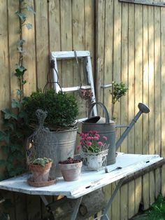 Gardening Table...old boards, aged clay pots, vintage watering cans, wire cloche...window.