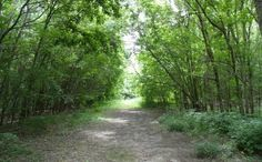 Weston Bend State Park - If you are looking for a nice quiet campground with good hiking trails, this is the place