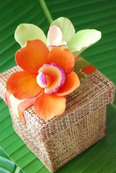 See more about handmade wedding favors, wedding favors and orange weddings. tropical