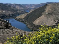 Welcome to Douro Valley - North of Portugal Enjoy your holidays in Portugal